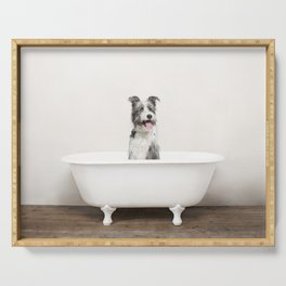 Mixed Breed Dog in a Vintage Bathtub Serving Tray