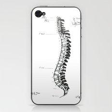 Anatomical Human Spine iPhone & iPod Skin