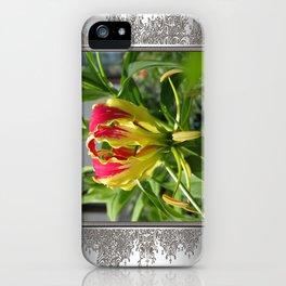 Gloriosa Rothschelidiana iPhone Case