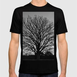 richmond park- b-w T-shirt