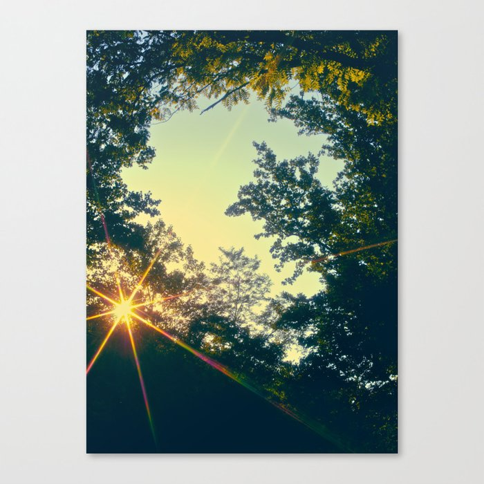 Last Days of Summer Canvas Print