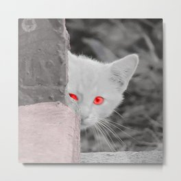 Kitty in the City Metal Print