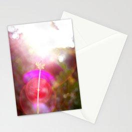 Sunspot Stationery Cards