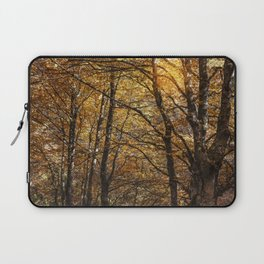 Forest in Autumn time Laptop Sleeve