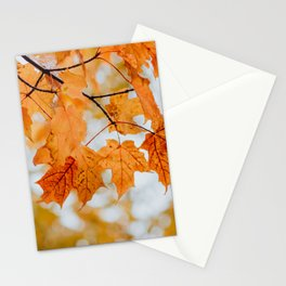 Orange Autumn Leaves Stationery Cards