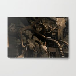 Wall of Skulls Metal Print