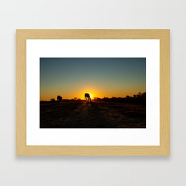 Silhouettes of horses at sunset in the field. Long shadows in the golden hour. Framed Art Print