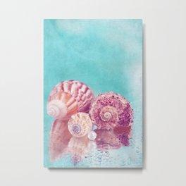 Seashell Group Metal Print