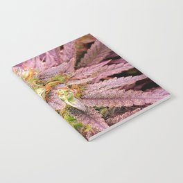 Passionately Purple Notebook