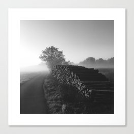 Timber - Black Canvas Print