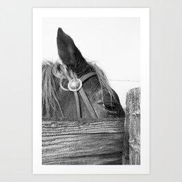 Ranch Six Art Print