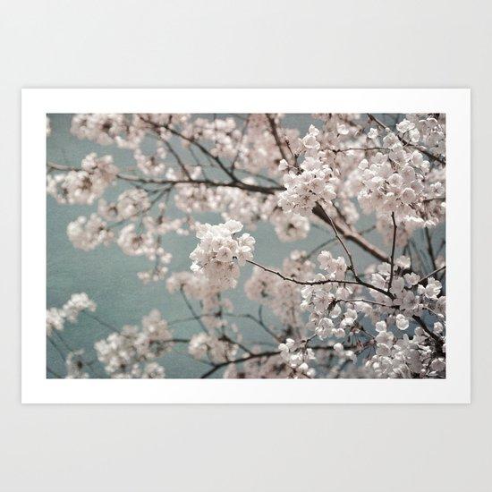 a sky full of blossoms Art Print
