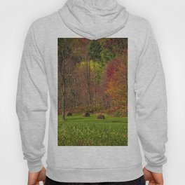 Lonely Bails of Color Hoody