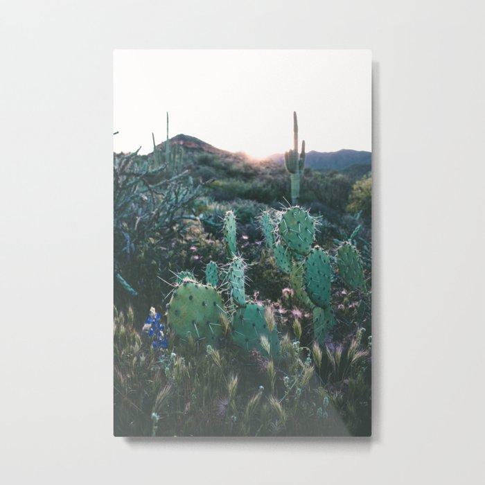 Arizona Cactus Metal Print