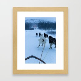 dog sledding, norway Framed Art Print