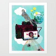 Vintage Polaroid Land Camera Art Print