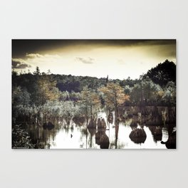 Dead Lakes Grunge Style Canvas Print