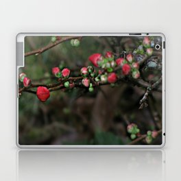 Japanese Red Quince Laptop & iPad Skin