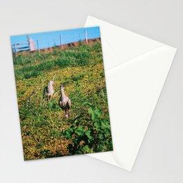 Siriemas Stationery Cards