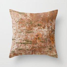 old brick texture Throw Pillow
