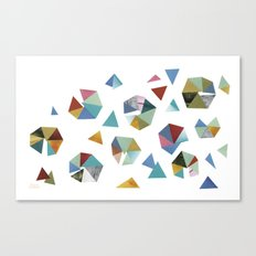 Color Hexagons Canvas Print