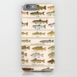 Illustrated Great Lakes Fishing Sportsmen's Game Fish Identification Chart, Superior, Huron, Ontario iPhone Case