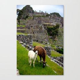 The Inhabitants of Machu Picchu Canvas Print
