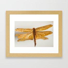 Gilt Dragonfly Framed Art Print
