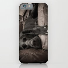 Black Labrador Asleep Slim Case iPhone 6s
