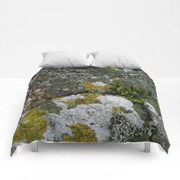 Coastal Rocks With Lichens and Ferns Comforters