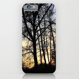 Sunset on the forest iPhone Case
