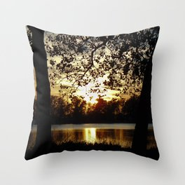 Kansas Golden Sunset Reflection Throw Pillow