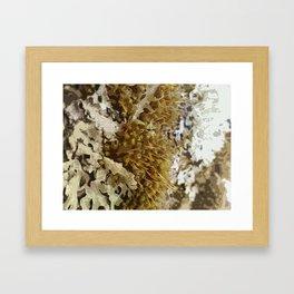 Abstract Moss design 02 Framed Art Print