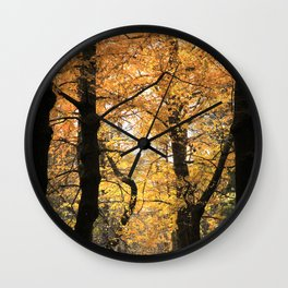Ginkgo biloba trees Wall Clock