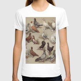 Vintage Pigeon Breeds Chart T-shirt