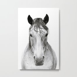 Horse I Metal Print