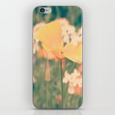 Orange Delight  iPhone & iPod Skin