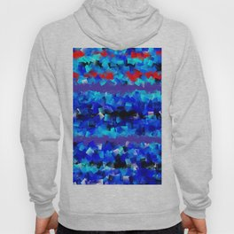 Blue lights and red birds Hoody