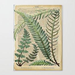 Book Art Page Botanical Leaves Canvas Print
