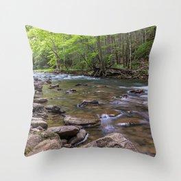 Camp Creek State Park, Princeton, West Virginia Throw Pillow