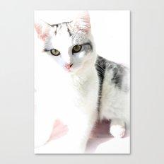 Cloud Cat Canvas Print
