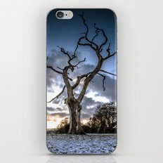Dead of Winters Light iPhone & iPod Skin