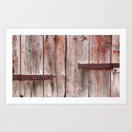 Rustic Red Door Venice Art Print