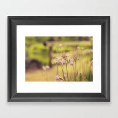 Tiny purple flowers Framed Art Print