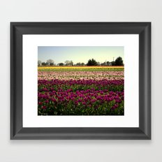 Colorful Day! Framed Art Print