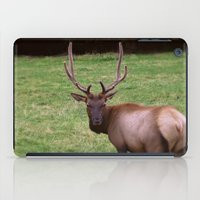 antlers iPad Cases featuring Antlers by FortuneArt&Photography
