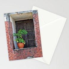 Plant on a Windowsill  Stationery Cards