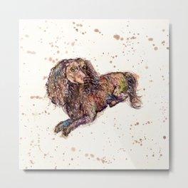 Dachshund Dog Metal Print