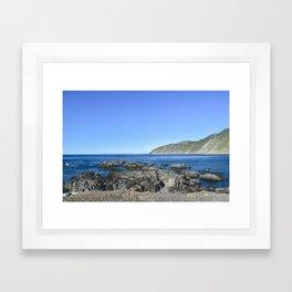 NEW ZEALAND: Coast Wellington, NZ Framed Art Print