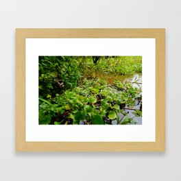 Amazon River Framed Art Print